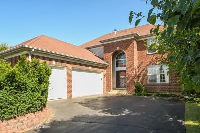 Plainfield Single Family Home New: 24304 Pear Tree Way