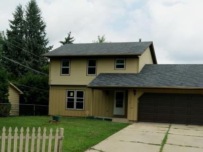 Hanover Park Single Family Home For Sale: 2198 Maple Avenue