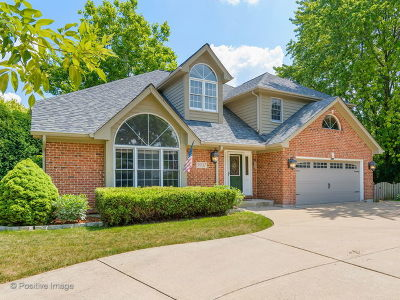 Downers Grove Single Family Home For Sale: 5937 Boundary Road