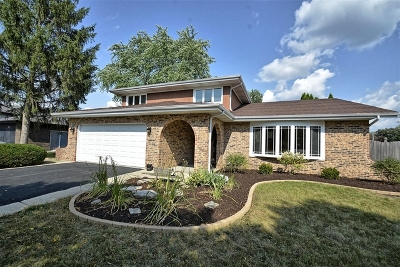 Orland Park Single Family Home For Sale: 14251 South 84th Avenue