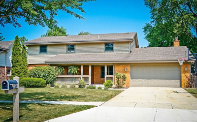 Downers Grove Single Family Home For Sale: 820 Jay Drive