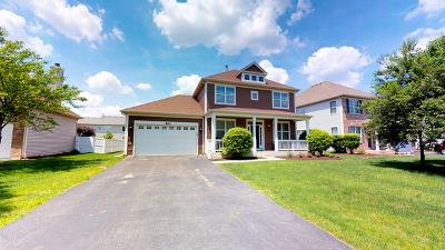 Bolingbrook Single Family Home For Sale: 803 Madison Boulevard