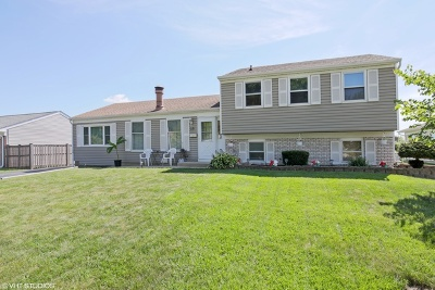 Schaumburg Single Family Home For Sale: 23 North Braintree Drive