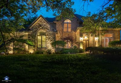 Lemont Single Family Home For Sale: 12922 Archer Avenue