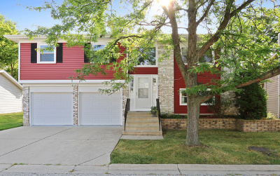 Hoffman Estates Single Family Home For Sale: 1192 Old Timber Court