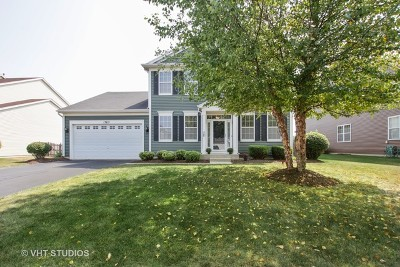 Plainfield Single Family Home For Sale: 13811 Meadow Lane