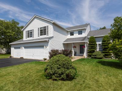 Carol Stream Single Family Home New: 675 Chestnut Drive