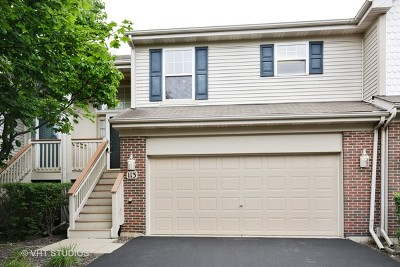 Streamwood Condo/Townhouse For Sale: 113 Samuel Court