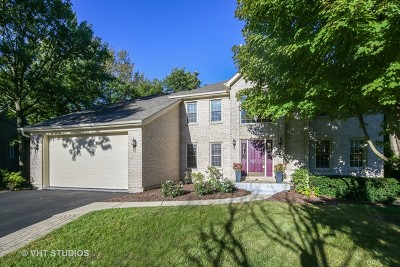 Bolingbrook Single Family Home For Sale: 3 Burr Oaks Court