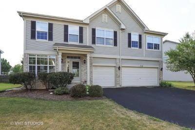 Round Lake Single Family Home Price Change: 1558 South Elizabeth Lane