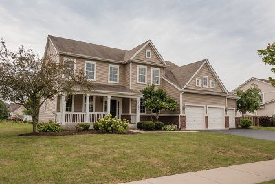 Huntley Single Family Home For Sale: 11191 Fitzgerald Lane