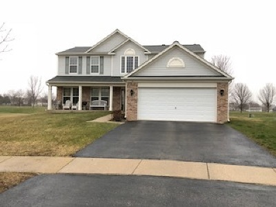 Bolingbrook Single Family Home For Sale: 6 Tiger Court