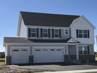 Plainfield Single Family Home New: 16916 South Callie Drive