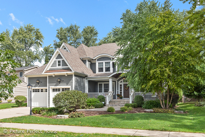 Naperville Single Family Home For Sale: 1212 Millet Street