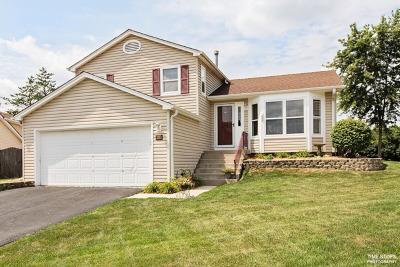 Woodridge Single Family Home New: 2712 Laurel Court