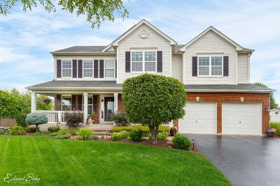 Huntley Single Family Home For Sale: 12520 Lions Chase Court