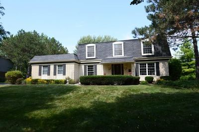 Palatine Single Family Home For Sale: 1304 West Whytecliff Road