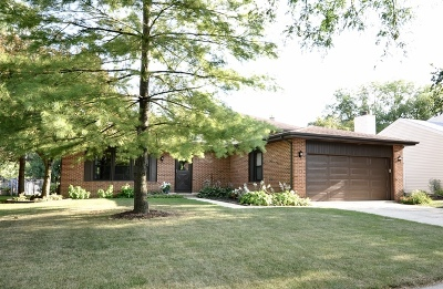 Naperville Single Family Home For Sale: 1416 Sunnybrook Drive