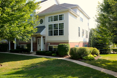St. Charles Condo/Townhouse For Sale: 779 Pheasant Trail