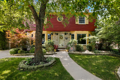 Oak Park Single Family Home New: 1227 Woodbine Avenue