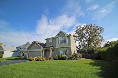 Bartlett Single Family Home For Sale: 1026 Longford Road
