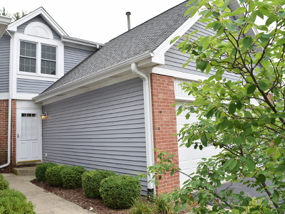 Carol Stream Condo/Townhouse New: 795 Hoover Drive