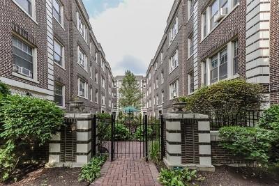 Oak Park Condo/Townhouse New: 441 North Lombard Avenue #3