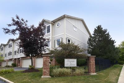 Palatine Condo/Townhouse For Sale: 771 West Kristen Court
