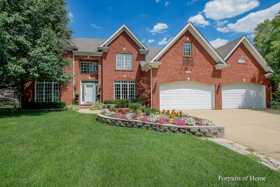 Naperville Single Family Home For Sale: 3932 Littlestone Circle