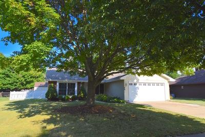 Schaumburg Single Family Home For Sale: 317 Islington Lane