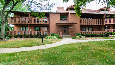 Burr Ridge Condo/Townhouse For Sale: 7978 South Garfield Avenue #206