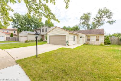 Roselle Single Family Home New: 991 Woodside Drive