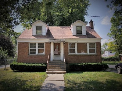 Matteson Single Family Home For Sale: 21202 Main Street