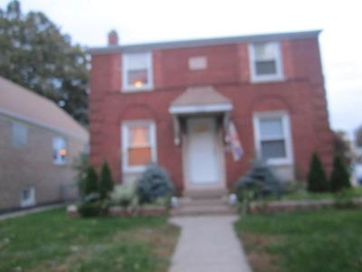 Cicero Single Family Home For Sale: 3745 South 57th Avenue