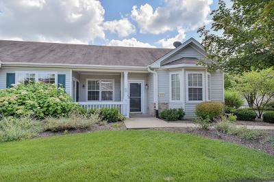 Huntley Condo/Townhouse For Sale: 12233 Quail Ridge Drive