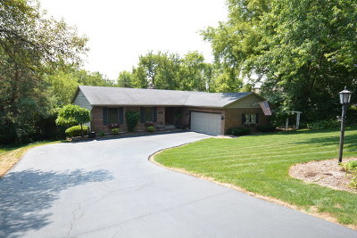 Mc Henry County Single Family Home New: 1045 Zange Drive