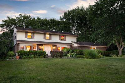 St. Charles Single Family Home New: 35w991 River Grange Road