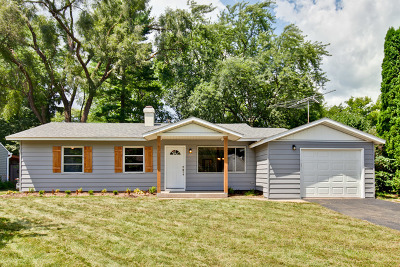 Cary Single Family Home For Sale: 88 South Seebert Street