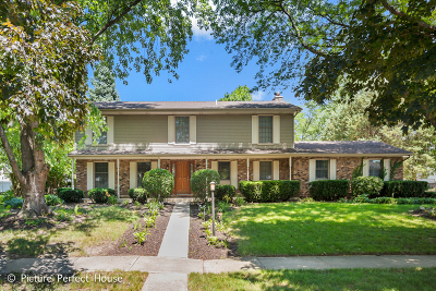 Naperville Single Family Home New: 6s503 Bridlespur Drive