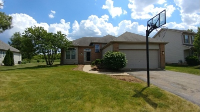 Plainfield Single Family Home New: 25031 Madison Street