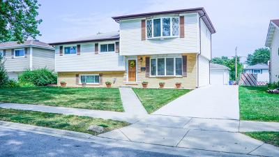 Addison Single Family Home New: 117 South Adeline Avenue