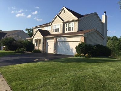 Lake Zurich Single Family Home For Sale: 618 Dunhill Drive