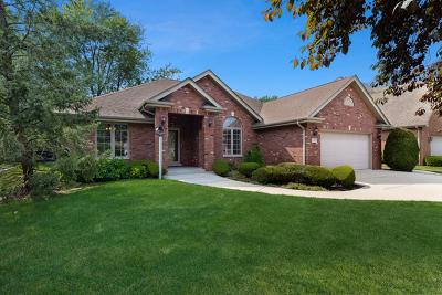Palos Heights Single Family Home New: 12320 South Nagle Avenue