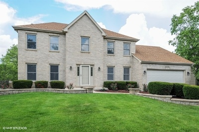 Naperville Single Family Home New: 1111 Magenta Court