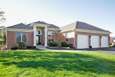 Elburn Single Family Home For Sale: 1401 Swinton Court