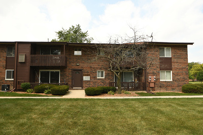 Tinley Park Condo/Townhouse New: 18059 Live Oak Court #1606