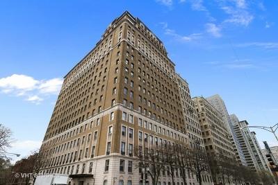 Chicago Condo/Townhouse New: 3500 North Lake Shore Drive #14A