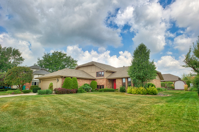 Orland Park IL Single Family Home New: $569,900