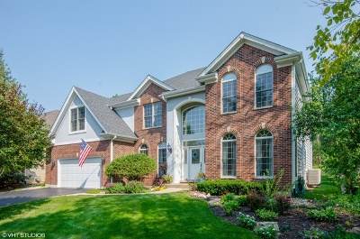 Palatine Single Family Home New: 1286 North Lakeview Drive