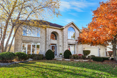 Naperville Single Family Home New: 3364 White Eagle Drive